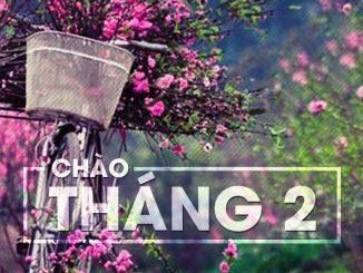truyền hình cáp sông thu đà nẵng khuyến mãi tháng 2